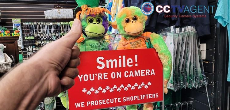 Shopping Center Security Cameras